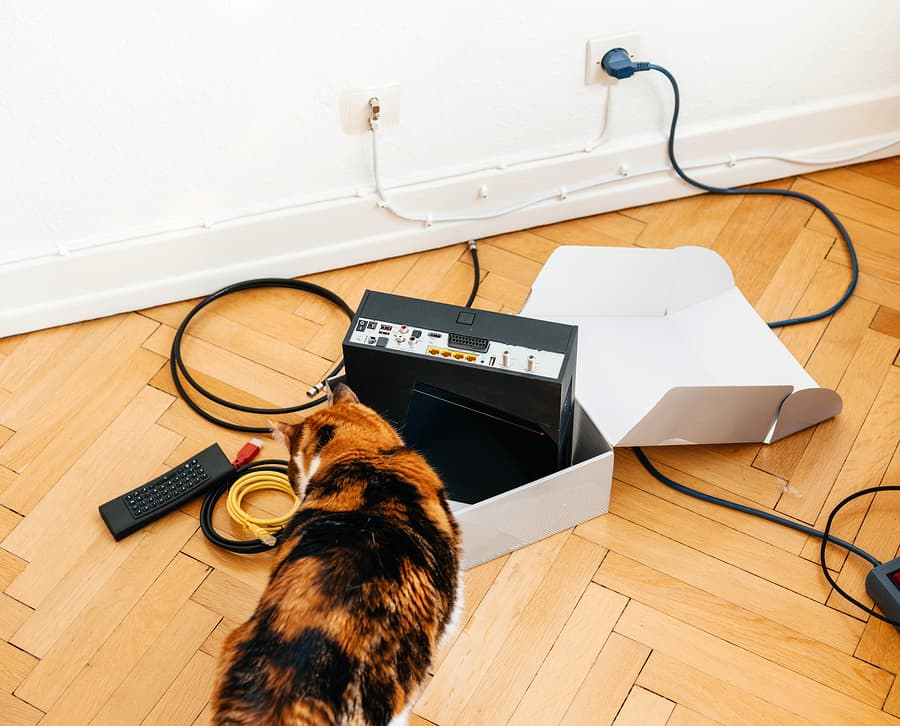 how to stop cats from chewing on cords
