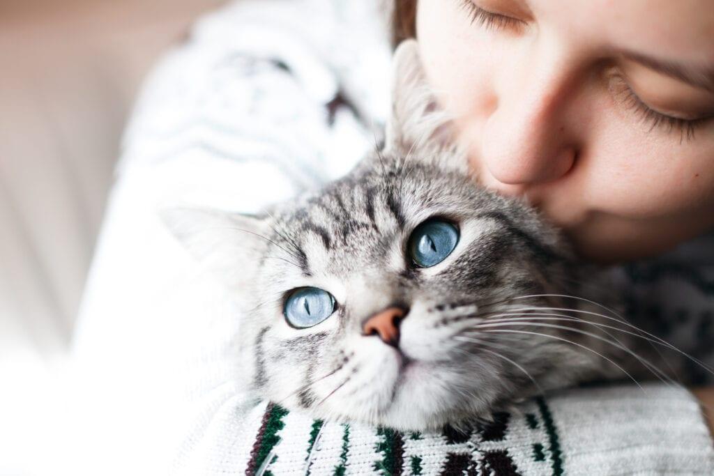 do cats like praise?