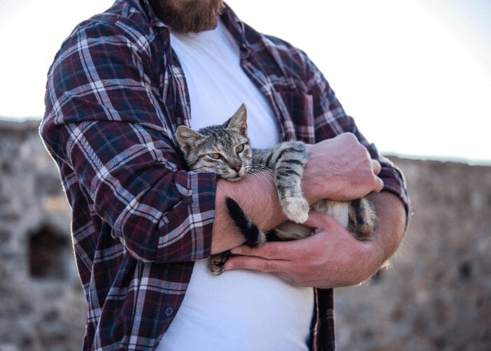 best way to hold a cat